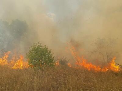 1300 огнеборци се борят с горски пожари в Португалия