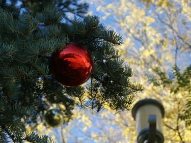 Кирайски градове забраниха украсата за Коледа