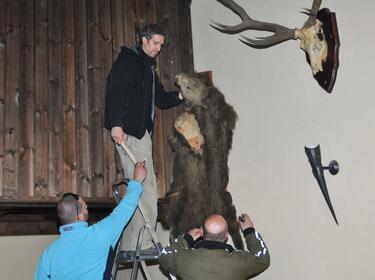 Иззеха 7 препарирани животни от механи в Банско