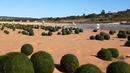 Няма да повярвате какво откриха туристи на плаж в Австралия (ВИДЕО)