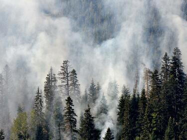 Пожарът в Рила се разраства