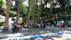 Ето как вековно дърво-убиец рухва върху религиозно шествие в Мадейра (ВИДЕО)