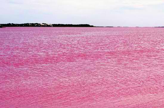 Една от най-големите загадки – розовото езеро Хилиър