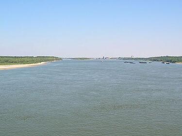 В деня на Дунав пазим есетровите риби